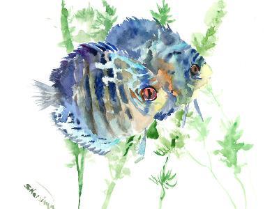 Aquarium Fish-Suren Nersisyan-Art Print