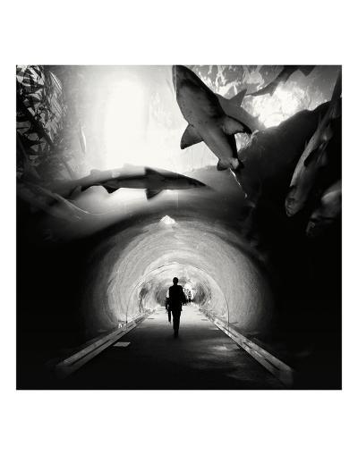 Aquarium, Study 1, Dubai, UAE-Marcin Stawiarz-Art Print