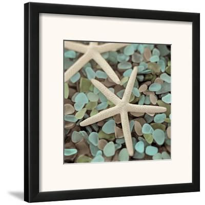 Aquatic 1-Alan Blaustein-Framed Art Print