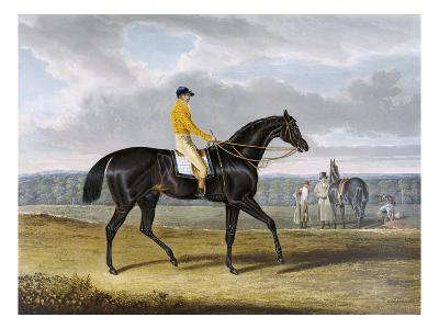 Aquatint by Thomas Sutherland After Jack Spigot, Winner 1821-John Frederick Herring I-Giclee Print