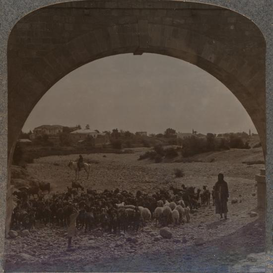 'Aqueduct showing Jericho through Arch', c1900-Unknown-Photographic Print