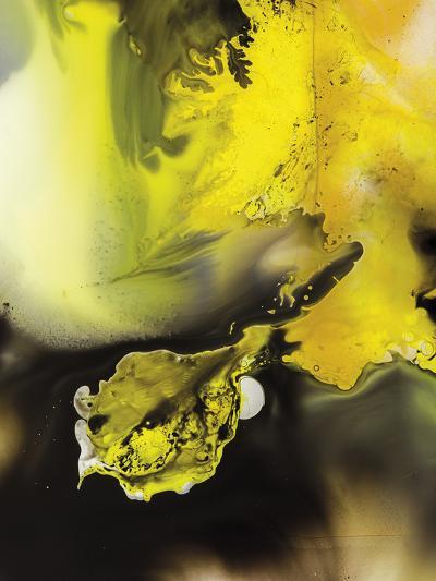 Aquila--Giclee Print
