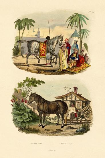 Arab Horse, 1833-39--Giclee Print
