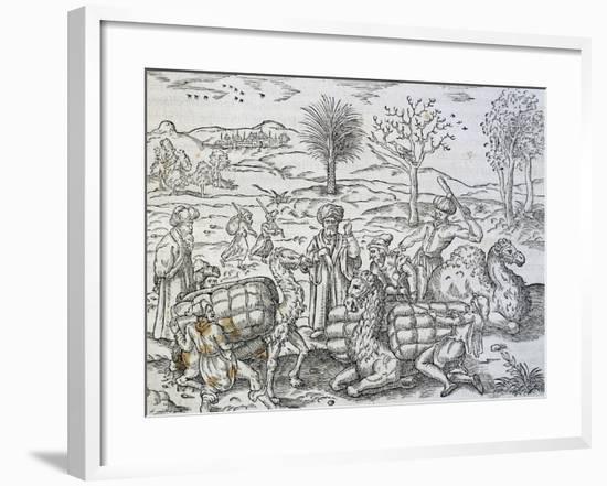 Arab Merchants in Syria-Andre Thevet-Framed Giclee Print