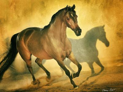 Arabian Beauty-Barry Hart-Premium Photographic Print