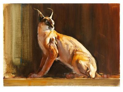 Arabian Caracal, 2010-Mark Adlington-Giclee Print