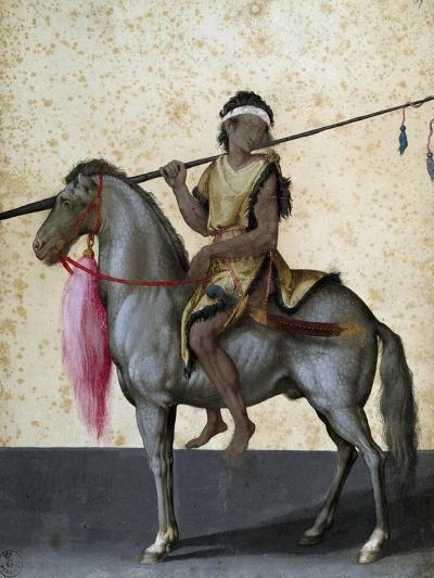 Arabian Horse, Drawing by Jacopo Ligozzi (1547-1627)--Giclee Print