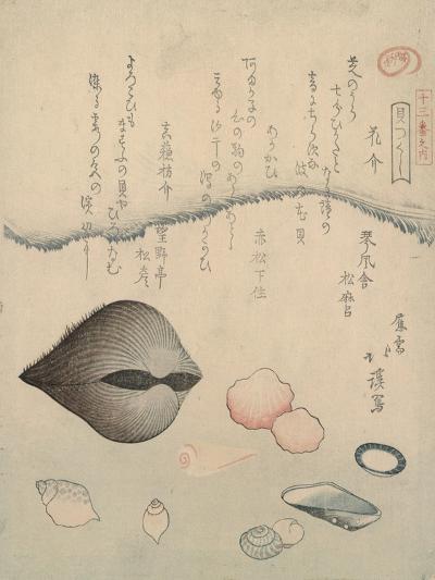 Aragai, Masu?gai, Anagai: Clams-Totoya Hokkei-Giclee Print