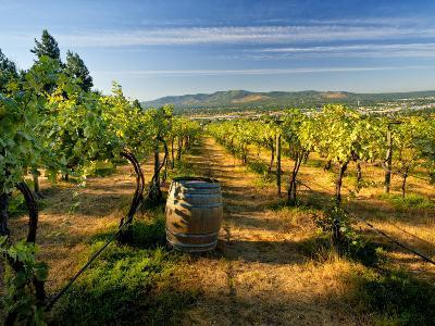 Arbor Crest Wine Cellars in Spokane, Washington, USA-Richard Duval-Photographic Print