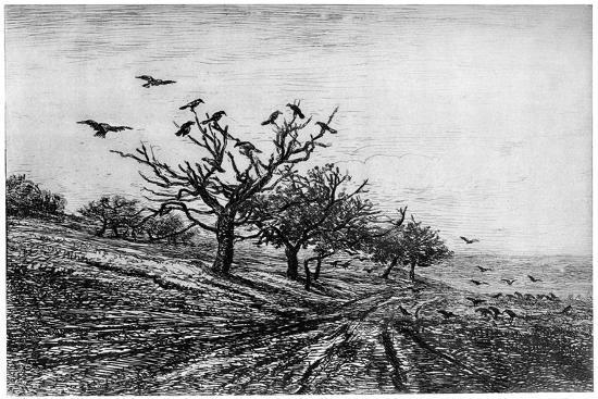 Arbre a Corbeaux, 1840-1875-Charles François Daubigny-Giclee Print