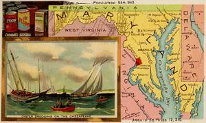 Maryland by Arbuckle Brothers