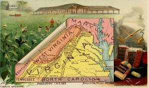 Virginia by Arbuckle Brothers