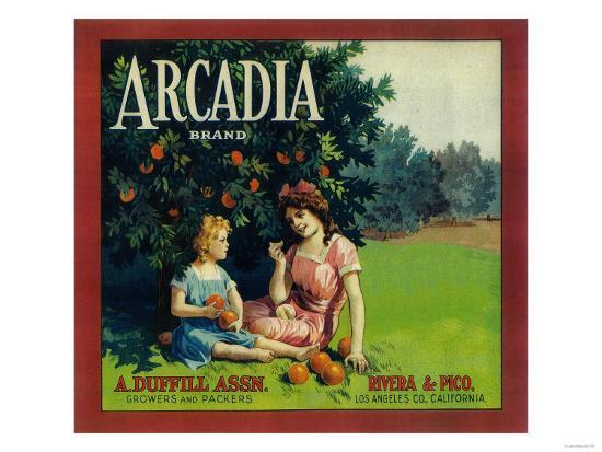 Arcadia Orange Label - Pico Rivera, CA-Lantern Press-Art Print