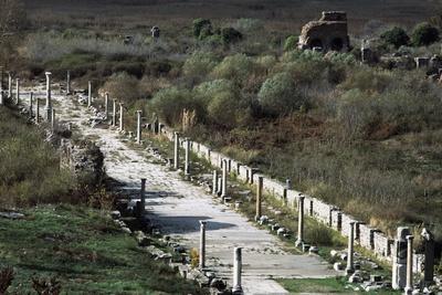 https://imgc.artprintimages.com/img/print/arcadian-way-and-the-greek-roman-theatre-ephesus-turkey-built-in-hellenistic-period-ca-200-bc_u-l-pp1klo0.jpg?p=0