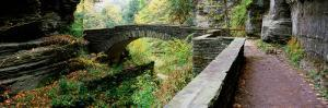 Arch Bridge in a Forest, Robert H. Treman State Park, Ithaca, Tompkins County, Finger Lakes