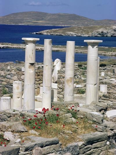 Archaeological Site, Delos, Unesco World Heritage Site, Greece-Adam Woolfitt-Photographic Print