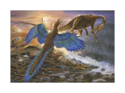 Archaeopteryx Defending its Prey from an Intruding Compsognathus-Stocktrek Images-Art Print