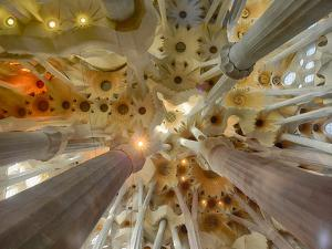 Architectural detail of Sagrada Familia ceiling, Barcelona, Catalonia, Spain