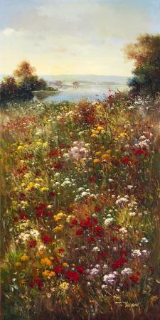 arcobaleno-wildflower-meadow-i
