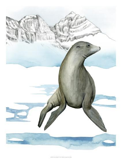 Arctic Animal IV-Grace Popp-Art Print