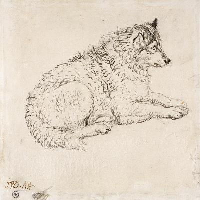 Arctic Dog, Facing Right (Pencil on Paper)-James Ward-Giclee Print