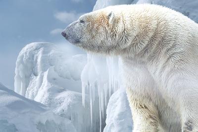 Arctic Frost-Gordon Semmens-Photographic Print