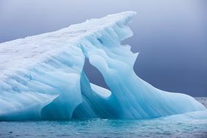Arctic Ice, Svalbard
