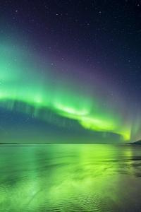 Aurora Borealis or Northern Lights in Iceland by Arctic-Images