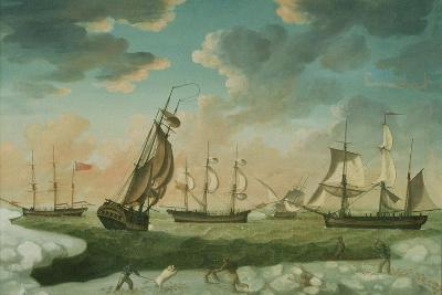 Arctic Scene-Robert Willoughby-Giclee Print
