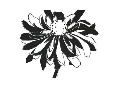 https://imgc.artprintimages.com/img/print/ardent-bloom_u-l-q1bkjhx0.jpg?p=0