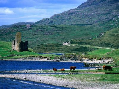 Ardvreck Castle on Loch Assynt, Assynt, Scotland-Grant Dixon-Photographic Print