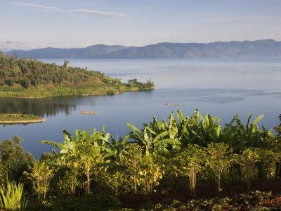 Crops Cultivated on Shores of Lake, Lake Kivu, Gisenyi, Rwanda