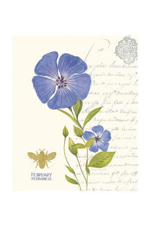 February Periwinkle