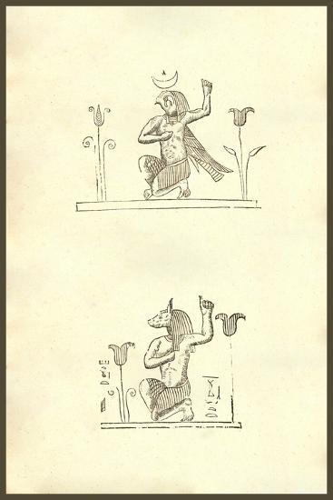 Aries Biceps-Ulisse Aldrovandi-Art Print