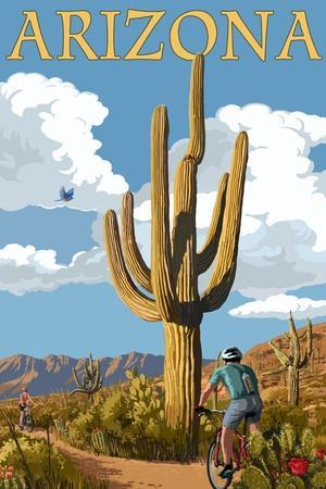 https://imgc.artprintimages.com/img/print/arizona-bicycling-scene_u-l-q1gqoko0.jpg?p=0