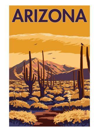 https://imgc.artprintimages.com/img/print/arizona-desert-scene-with-cactus_u-l-q1gp4ww0.jpg?p=0