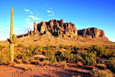 https://imgc.artprintimages.com/img/print/arizona-desert-sunset_u-l-q103rhv0.jpg?p=0