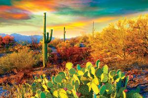 Arizona - Dessert Colors