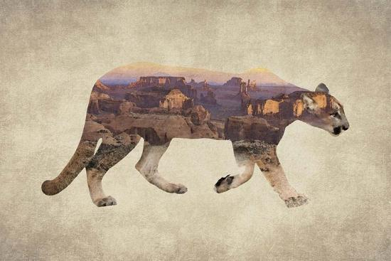 Arizona Mountain Lion-Color Me Happy-Art Print