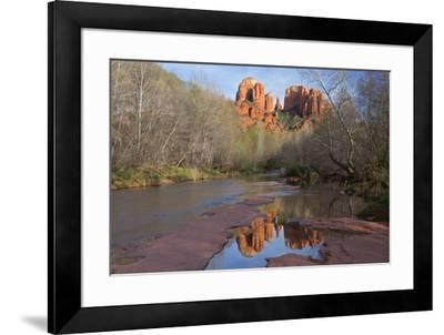 Arizona, Sedona, Crescent Moon Recreation Area, Red Rock Crossing, Cathedral Rock-John & Lisa Merrill-Framed Premium Photographic Print