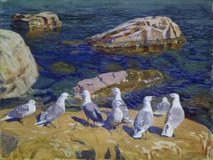 Seagulls, 1910 by Arkadi Rylow