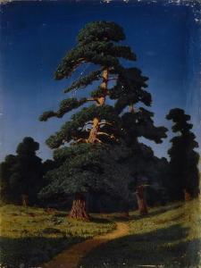 Pine Tree by Arkhip Ivanovich Kuindzhi