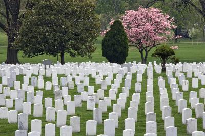 Arlington National Cemetery Headstones, Arlington, Virginia, USA-Jaynes Gallery-Photographic Print