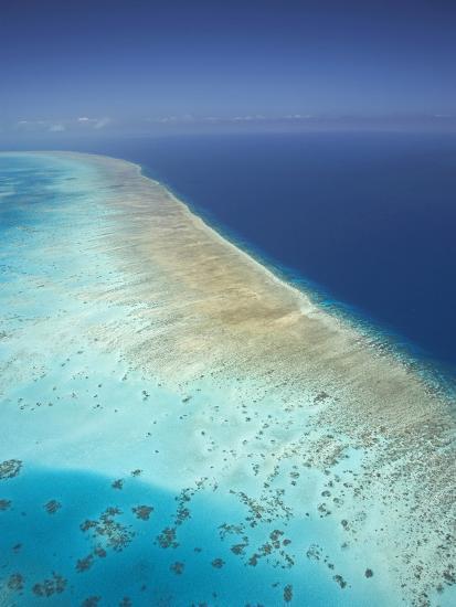Arlington Reef, Great Barrier Reef Marine Park, North Queensland, Australia-David Wall-Photographic Print