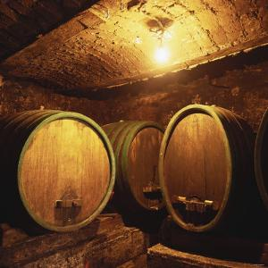 Wine Barrels of the Valdhuber Wine Estate, Svecina, Slovenia by Armin Faber