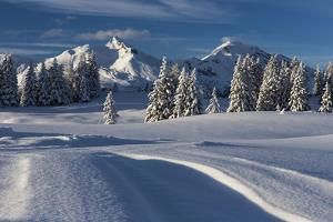 Snow-Covered Scenery in the Churer Rhine Valley by Armin Mathis