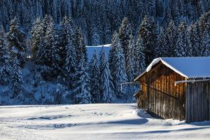 Stable in the Winter Scenery by Armin Mathis