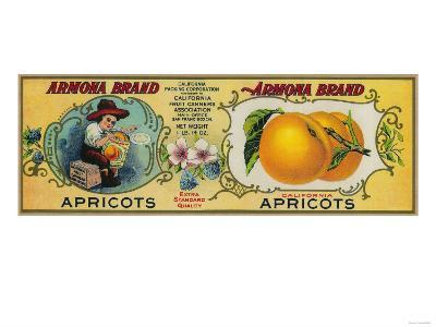 Armona Apricot Label - San Francisco, CA-Lantern Press-Art Print
