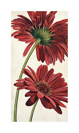 Armonie in Rosso-Eva Barberini-Giclee Print