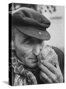 Armora of Truffle Is Inhaled by Italian Truffle-Gatherer